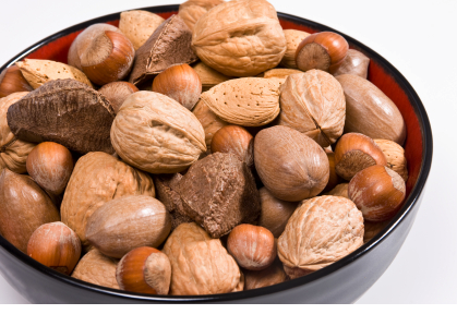 nuts toxic to dogs