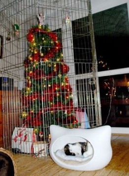 Caged Christmas Tree to Protect Your Pets?