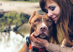 Dogs will snub strangers who are mean to their owners, says study – PetsOnBoard.com