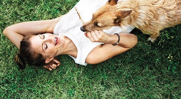 pet-dog-woman-stress