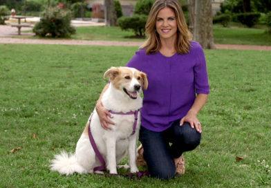 Clear the Shelters Pet Adoption 2016 Recap-PetsOnBOard.com