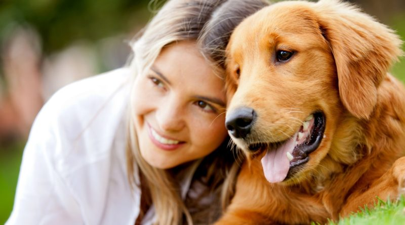 The Top 25 Pet-Friendly Cities in America-PetsOnBoard.com