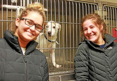 Pet lovers 'Empty the Shelters' at Oakland County free adoption event- PetsOnBoard.com